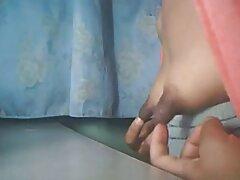 ফাইল দৃষ্টি, পাশের অংশ 1 বাংলা সেকচ বিডিও